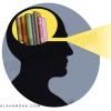 مغز,انسان,نور,چشم,روشنی,نورانیت,کتابخانه,سیاهی,روشنایی,سفیدی,زرد,فکر,جامعه,ظلمت,کتاب خوب,بینایی,بینش,بصیرت,بصر,عین,العین,خواندن,خواندنی,مطالعه,مطلب,کور,ظلمانی,تاریک