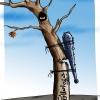 کاریکاتور,اصلاح طلب,چماق,سیاسی,زور,درخت,کارگزاران,تدبیر و امید,روحانی,دولت,گودرزی,عباس,خشک,داس,فشار,شکست,مدیر,اصلاحات