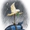 ظلم,بمب,اسراییل,طناب,کاریکاتور,زیتون,صلح,کبوتر,آزادی,freedom