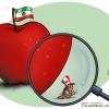 kanada cartoon,کانادا,سفارت خانه,سفیر,کاریکاتور,سیاسی,کارتون,سیب,ایران,تهران,پرچم ایران,ذره بین,خارجی,عباس گودرزی